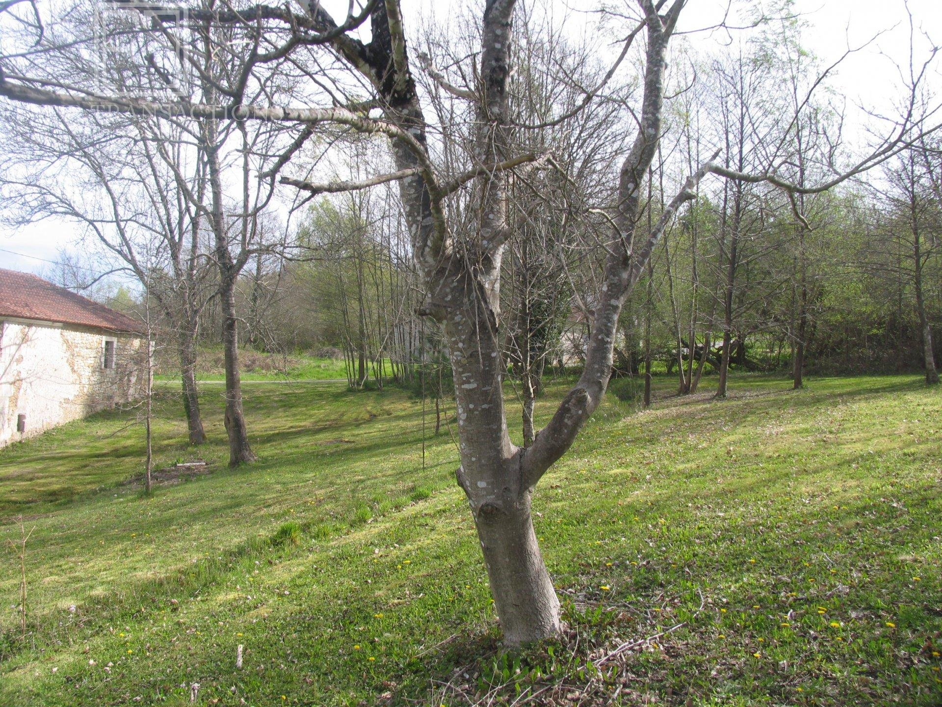 Corps de ferme sur terrain  7692 m²