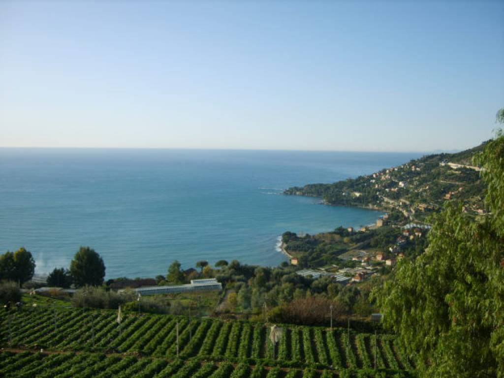 Sale Apartment villa - Ventimiglia Ville - Italy
