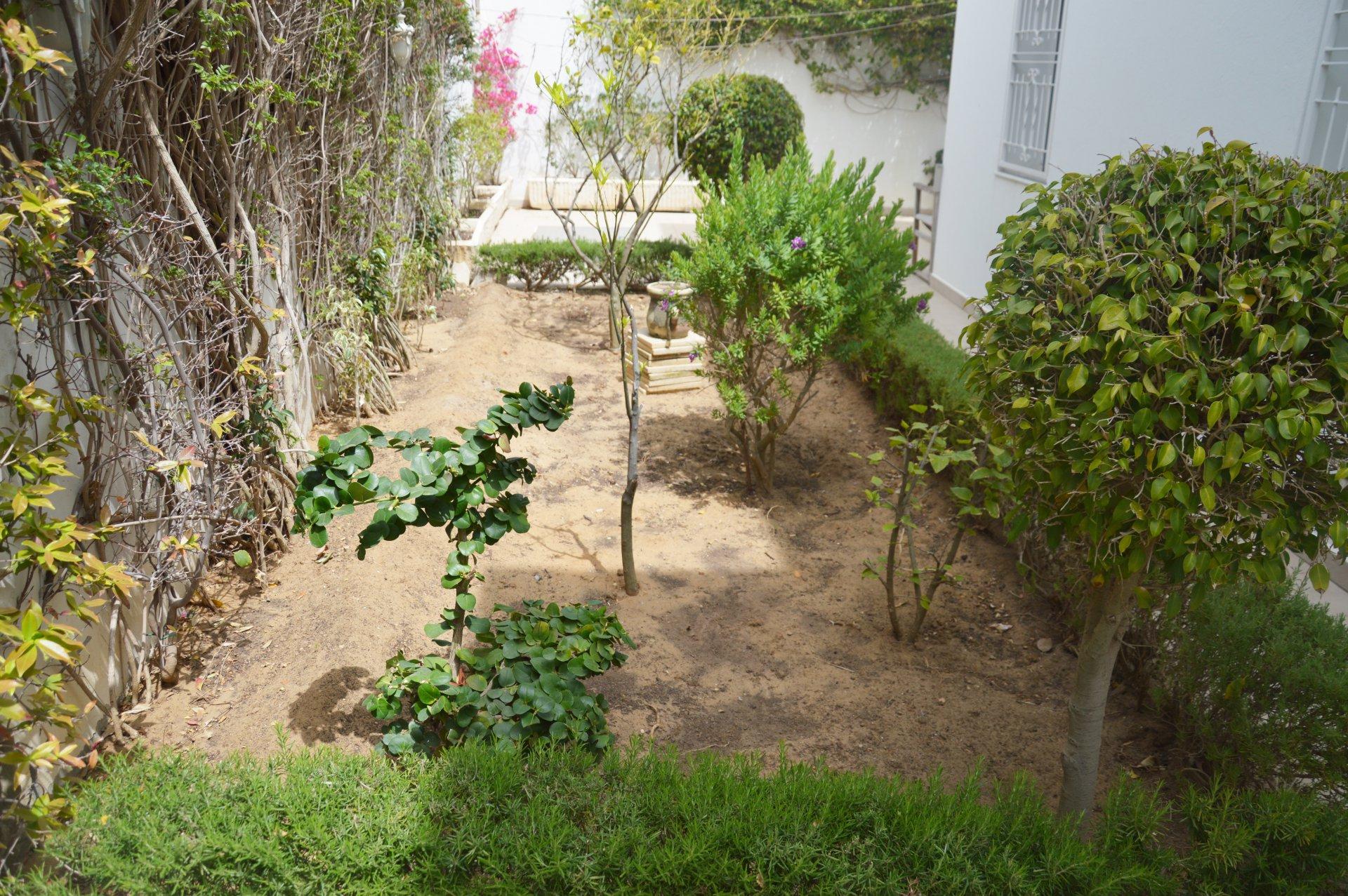 Rental Villa - Gammarth - Tunisia