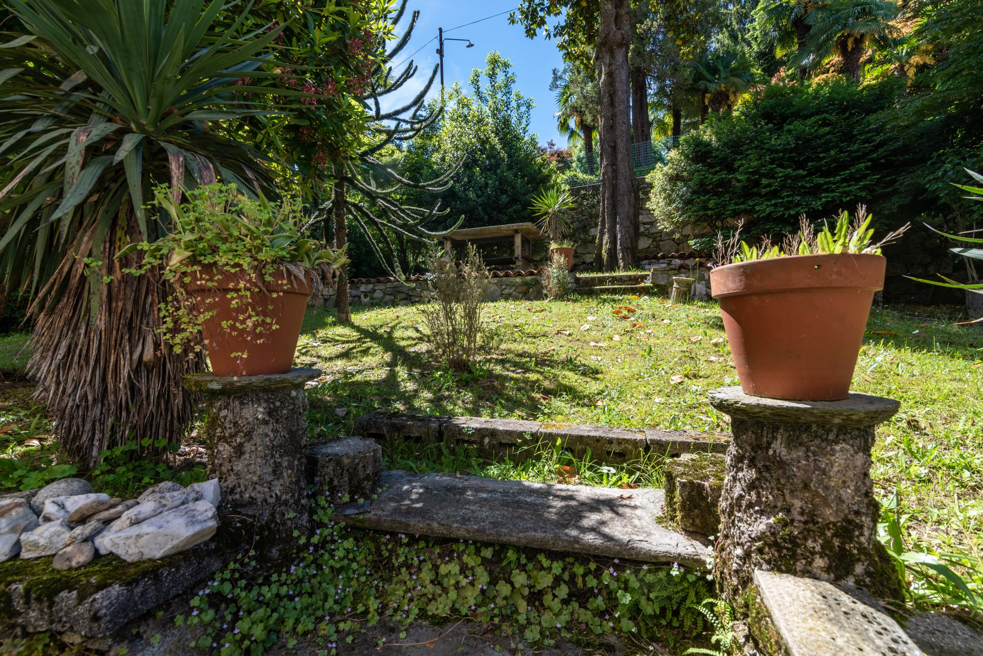 Property for sale in the centre of Stresa-garden