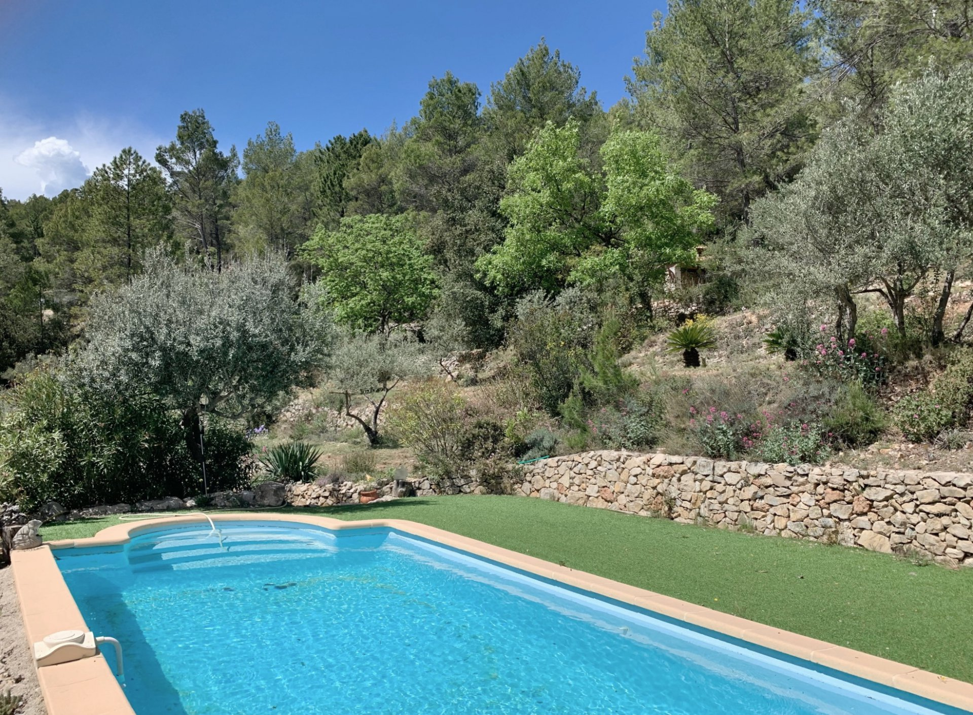 Villa with pool, guest appartment, beautiful ground and good views