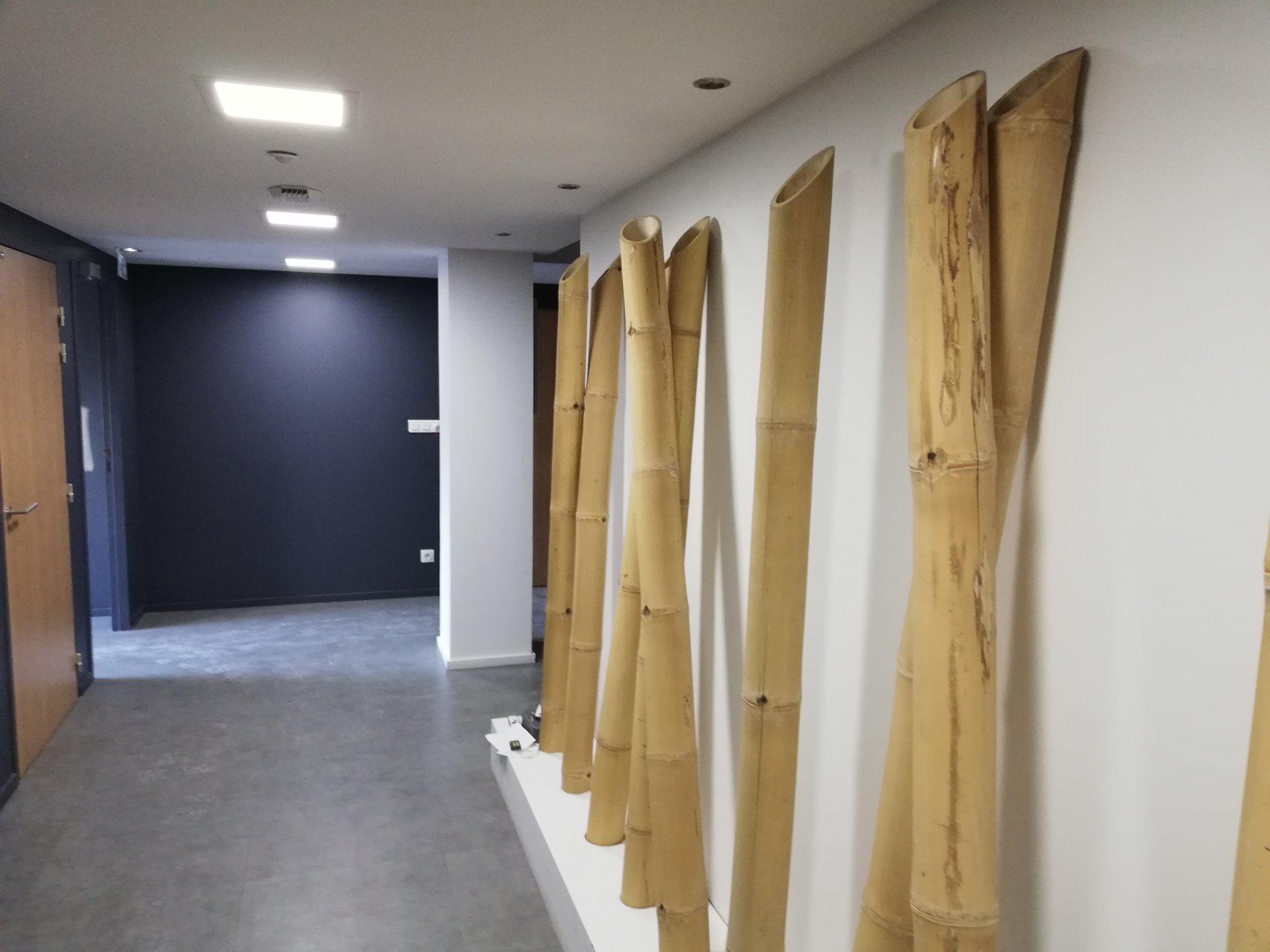 LOCAL/BUREAU DE 40 m²
