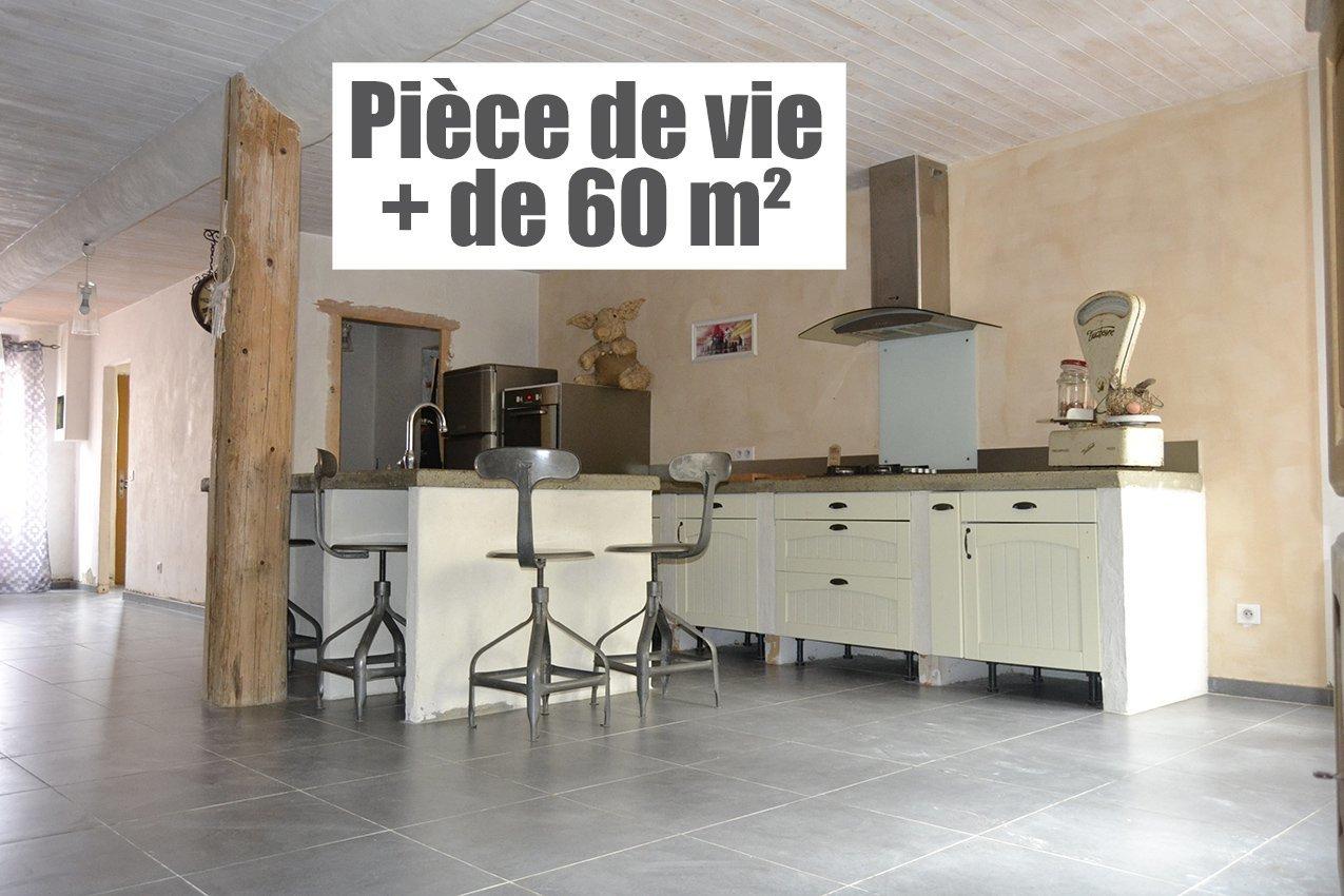 Grande maison en pierres T5/6 rénovée