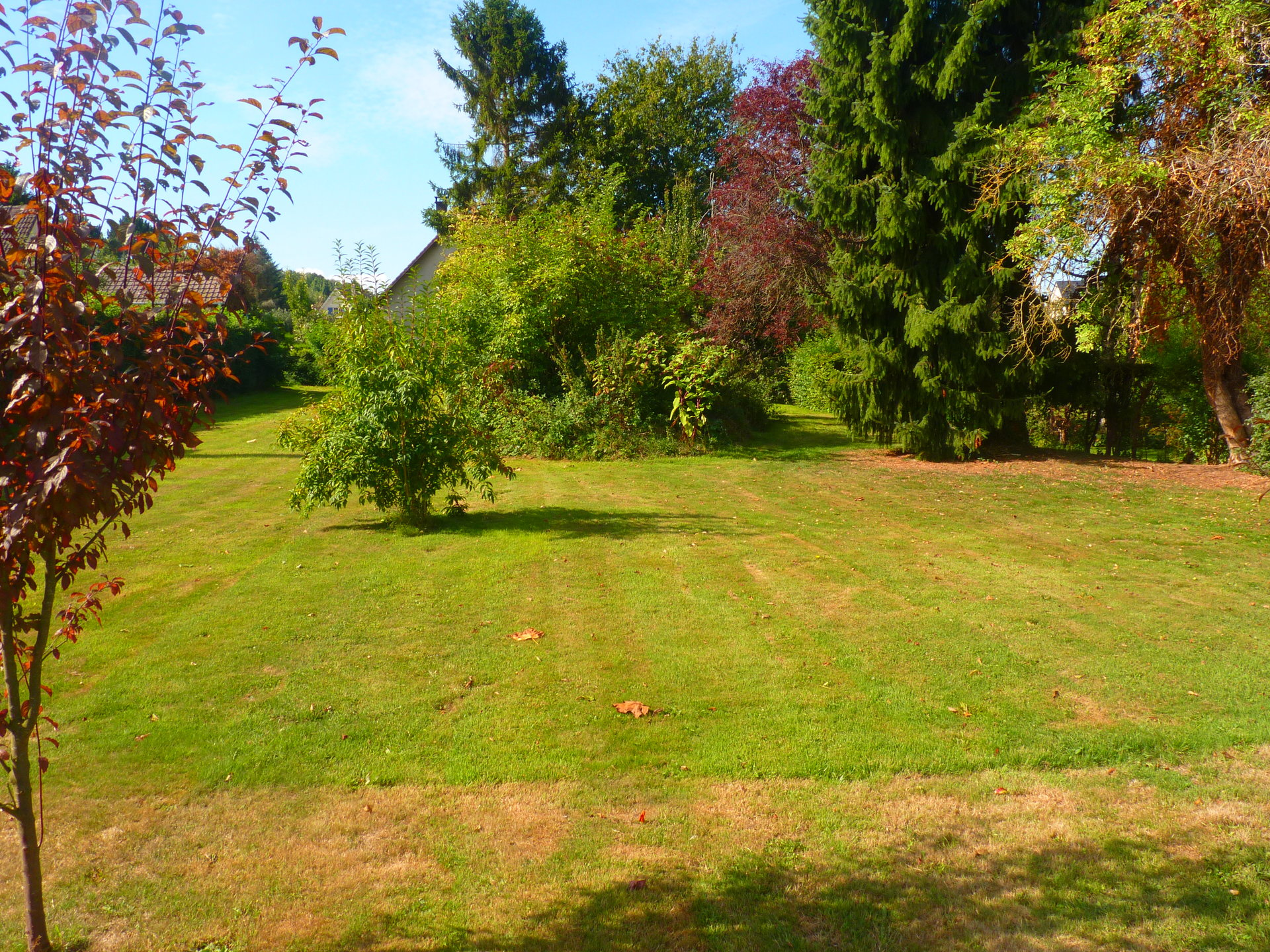 Sale Plot of land - Saint-Jean-du-Cardonnay