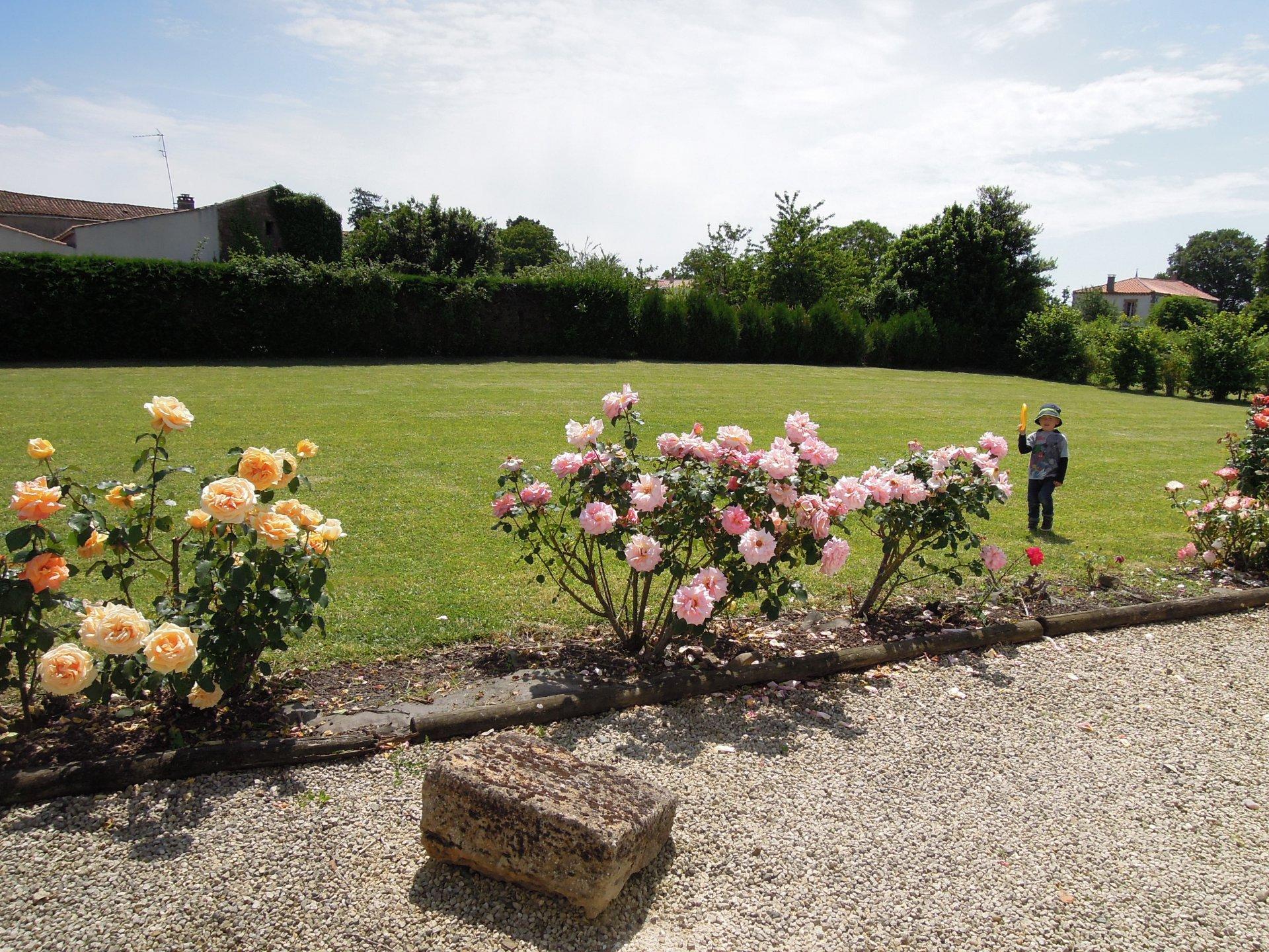 Vendée - Gîte avec grand jardin dans village paisible