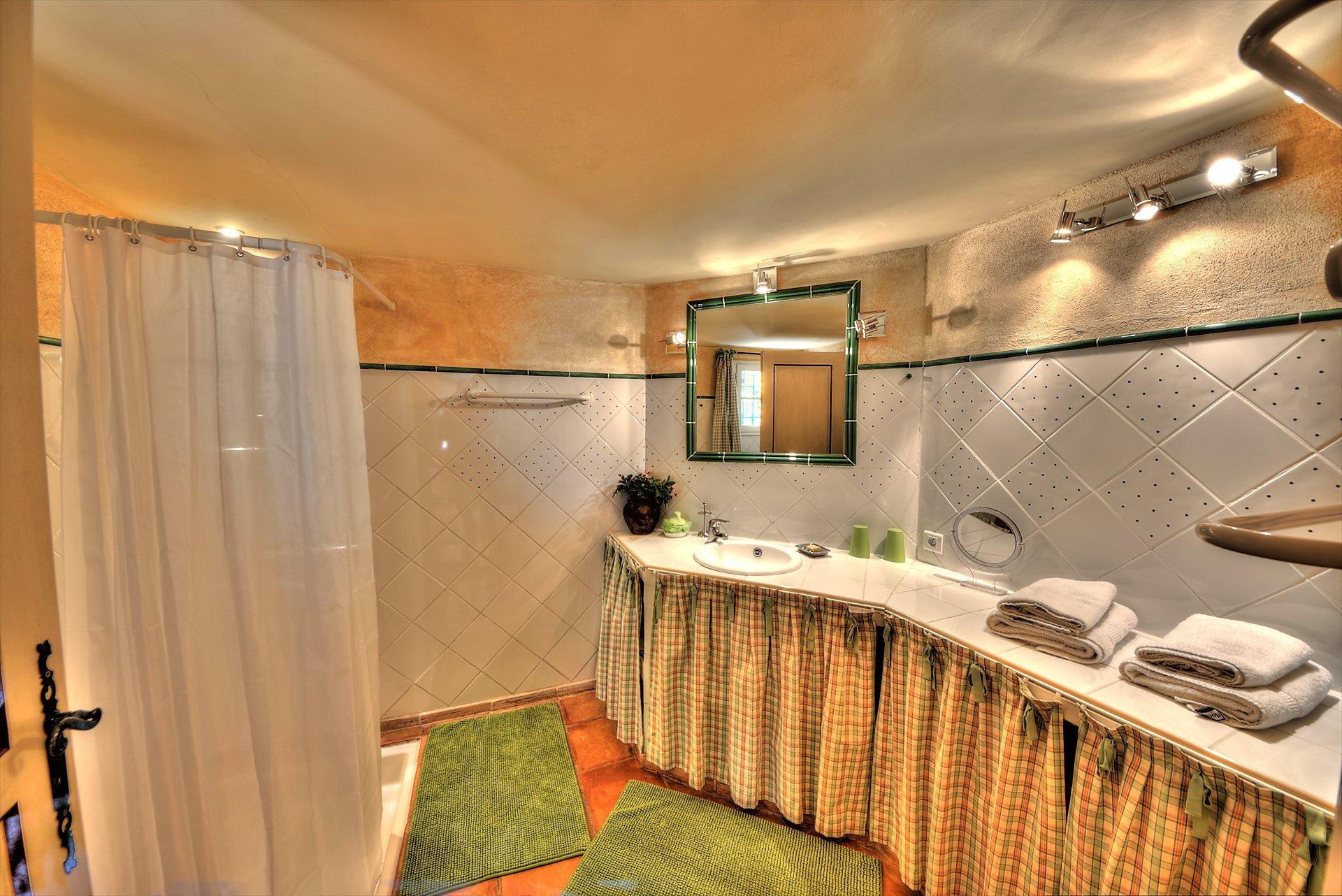 Salle de douche de la suite