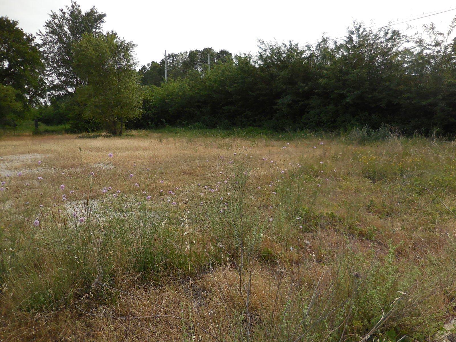 Vente Terrain constructible - Savasse
