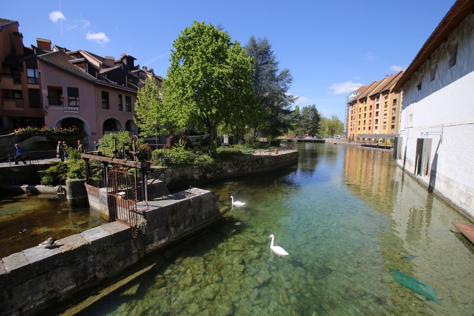 Annecy, vieille ville , T1 de 40m2.