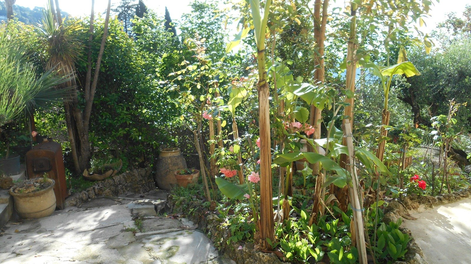 Grasse - Dans maison bourgeoise spacieux appartement 3 pièces en rez de jardin