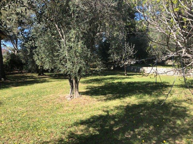 Grasse - Saint-Jacques - Terrain 3 000 m2