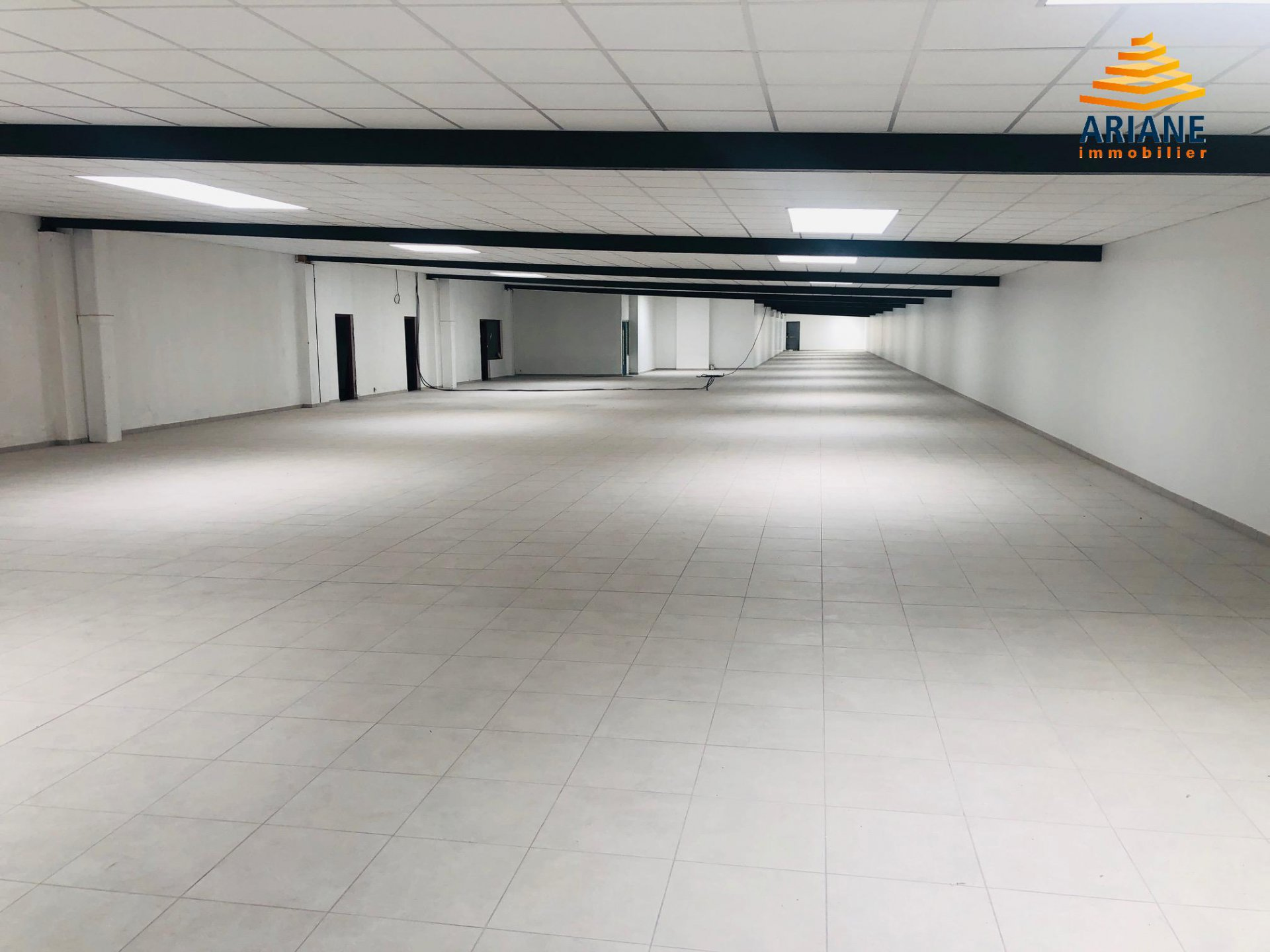 Bureaux divisibles à partir de 250 m2
