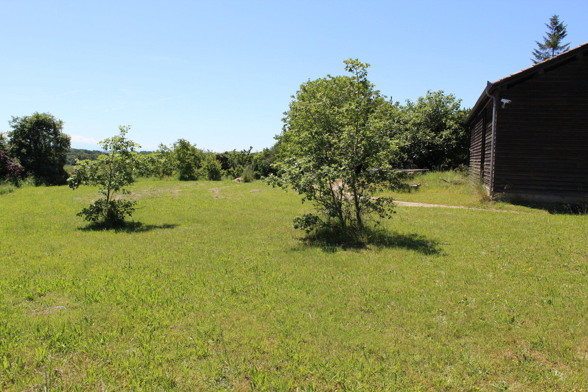 Large atypical house on 1 hectare. 4,127m² with panoramic Pyrenees view