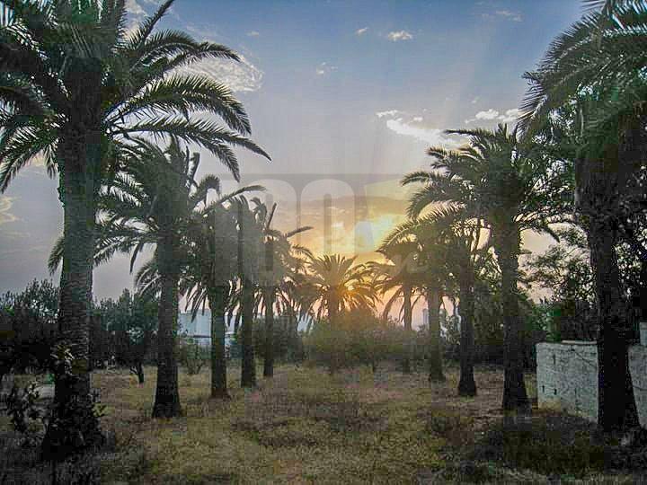 Vente Villa - Sidi Bou Saïd - Tunisie