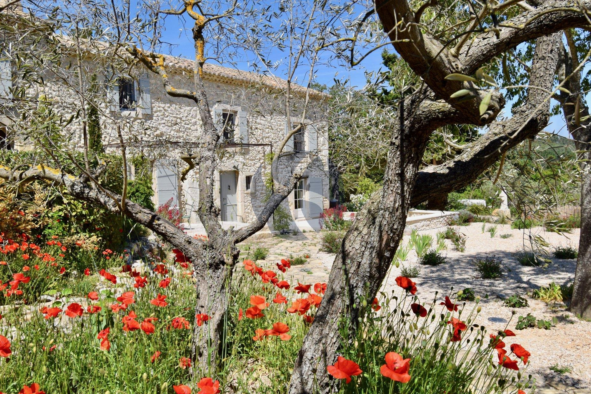 Seasonal rental Property - Eygalières