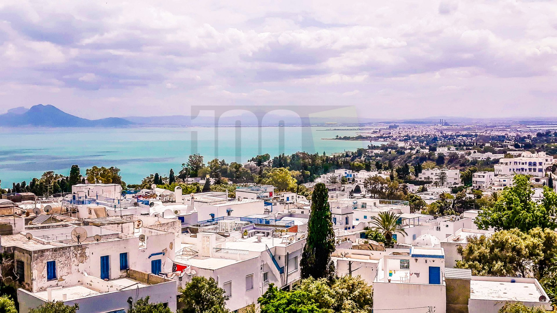 Vente terrain constructible de 3500 m² à Sidi Bou Said