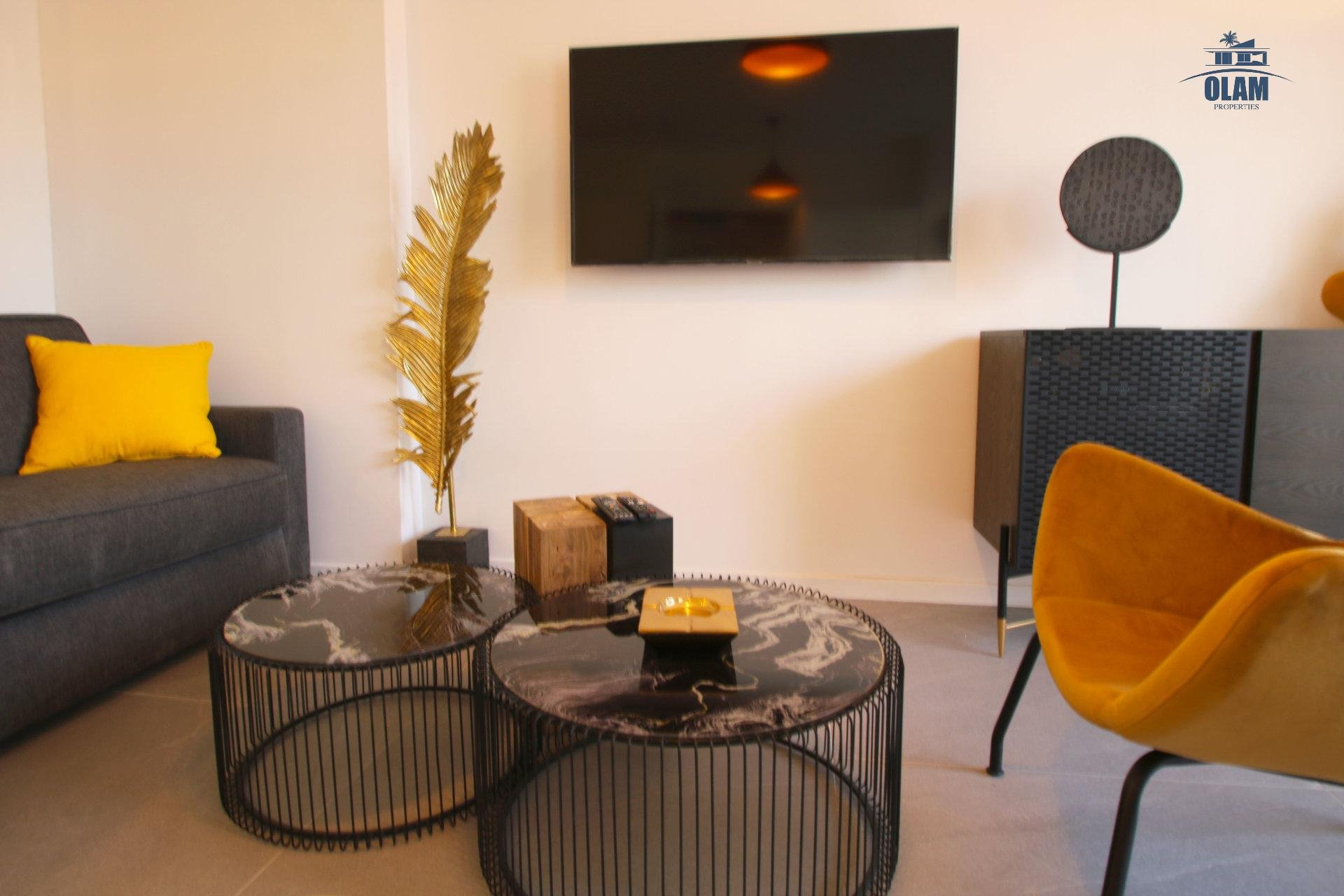 Living room, Cannes, Seasonal rental, TV, Croisette, French Riviera