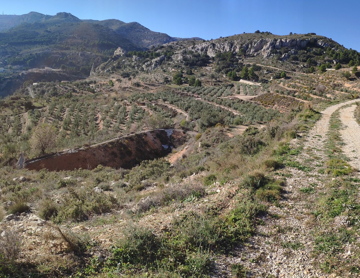 Irrigated Finca Florent