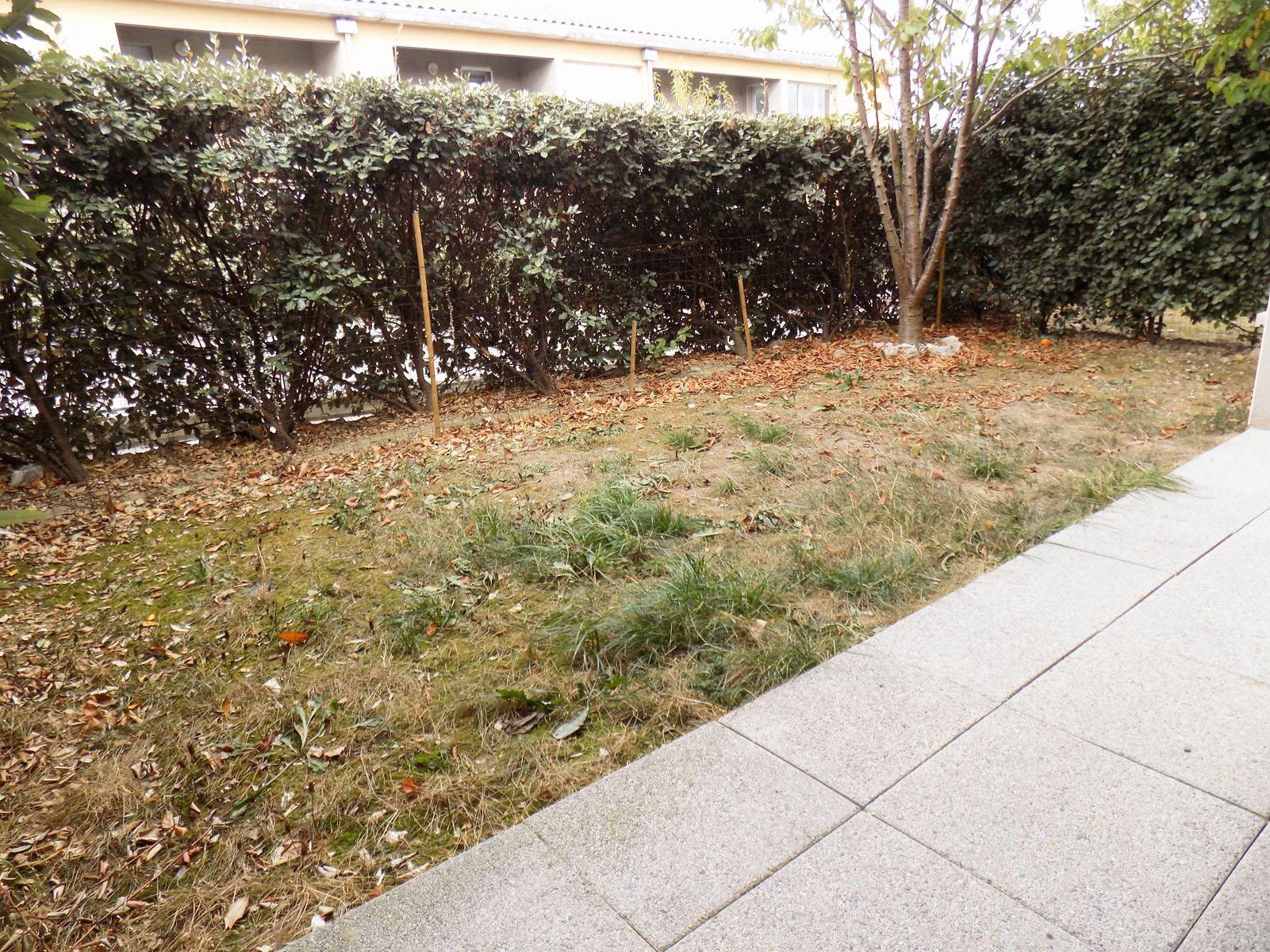 Appartement T2 avec jardin - 31780 CASTELGINEST