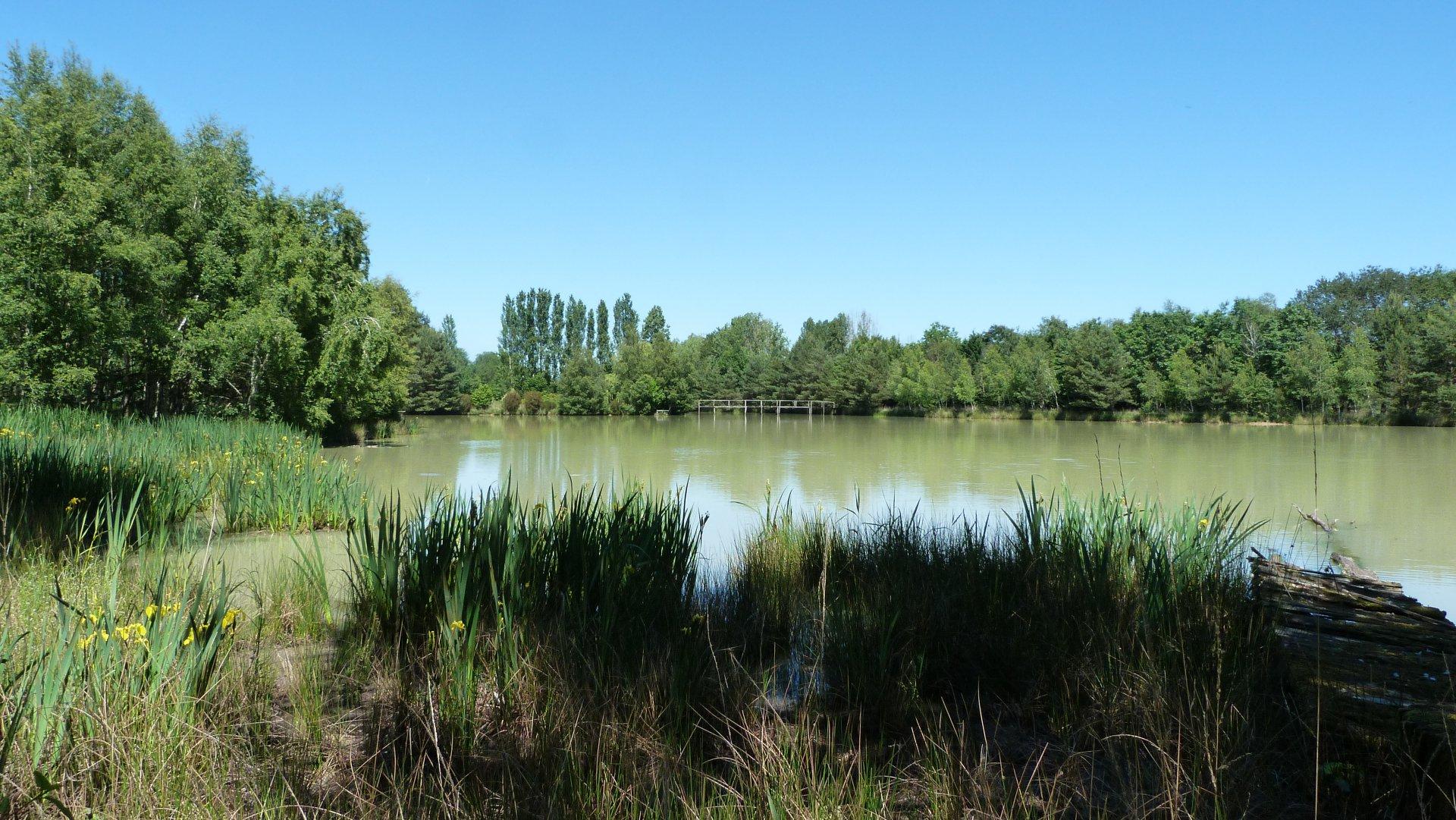Bel Etang en Charente