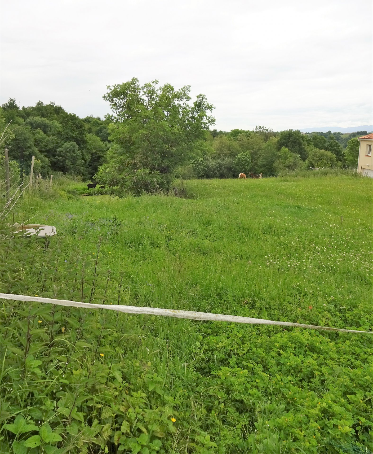 Terrain constructible secteur Montespan