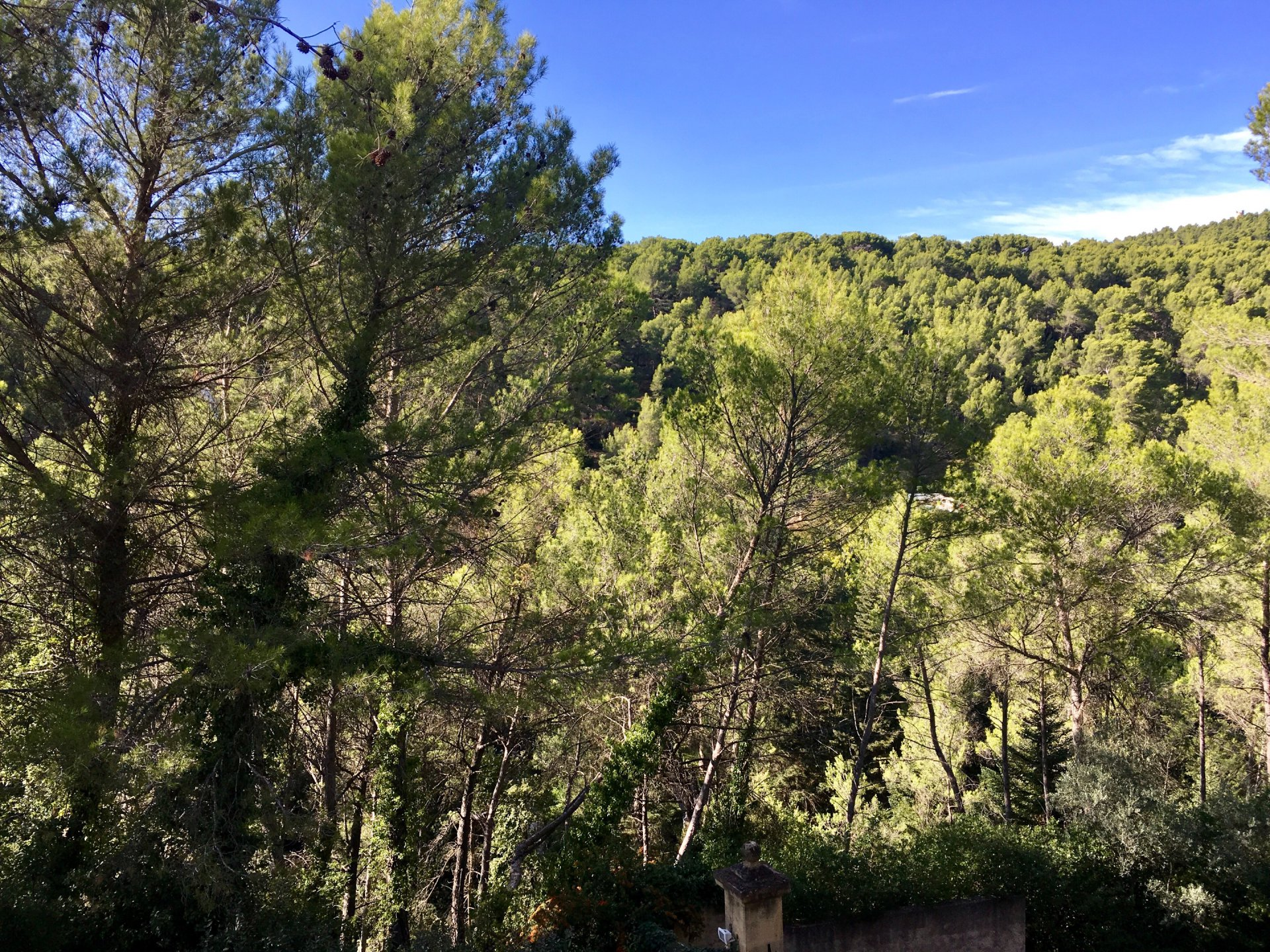 Propriété de Maître Aix en Provence St Marc