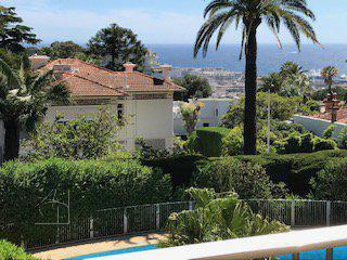 cannes californie vue mer et  verdure