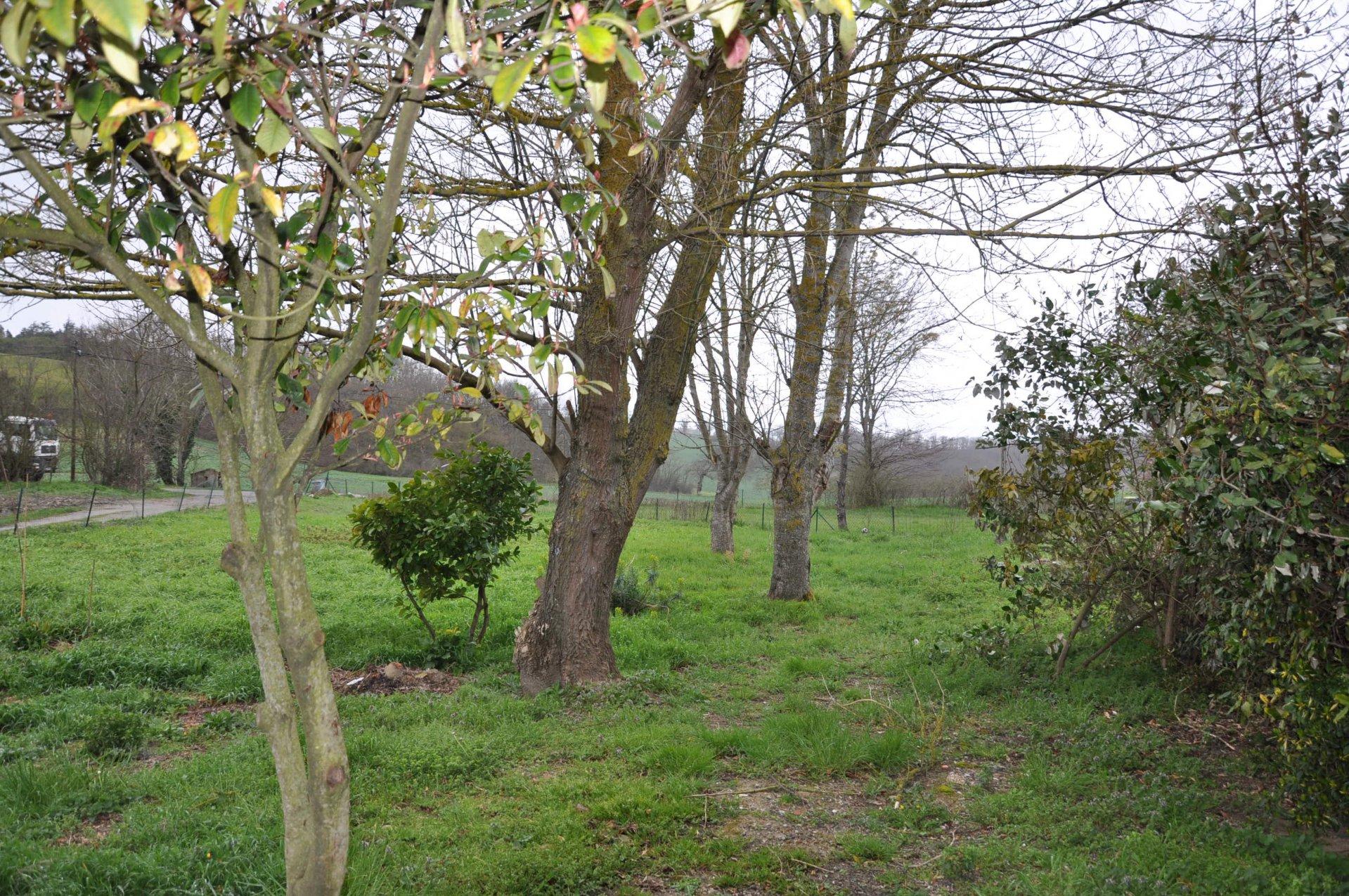 Venta Granja - Castanet-Tolosan