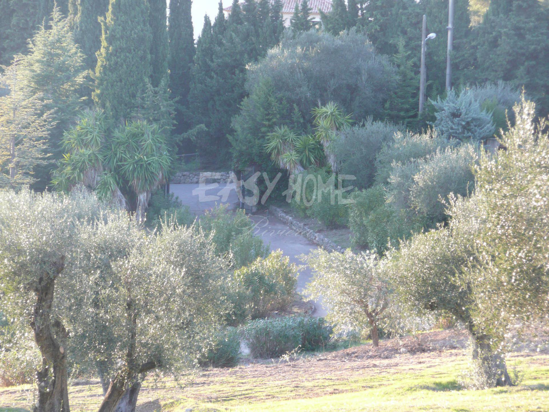 Purchase / Sale Exceptional and rare villa in Mougins - Sea view