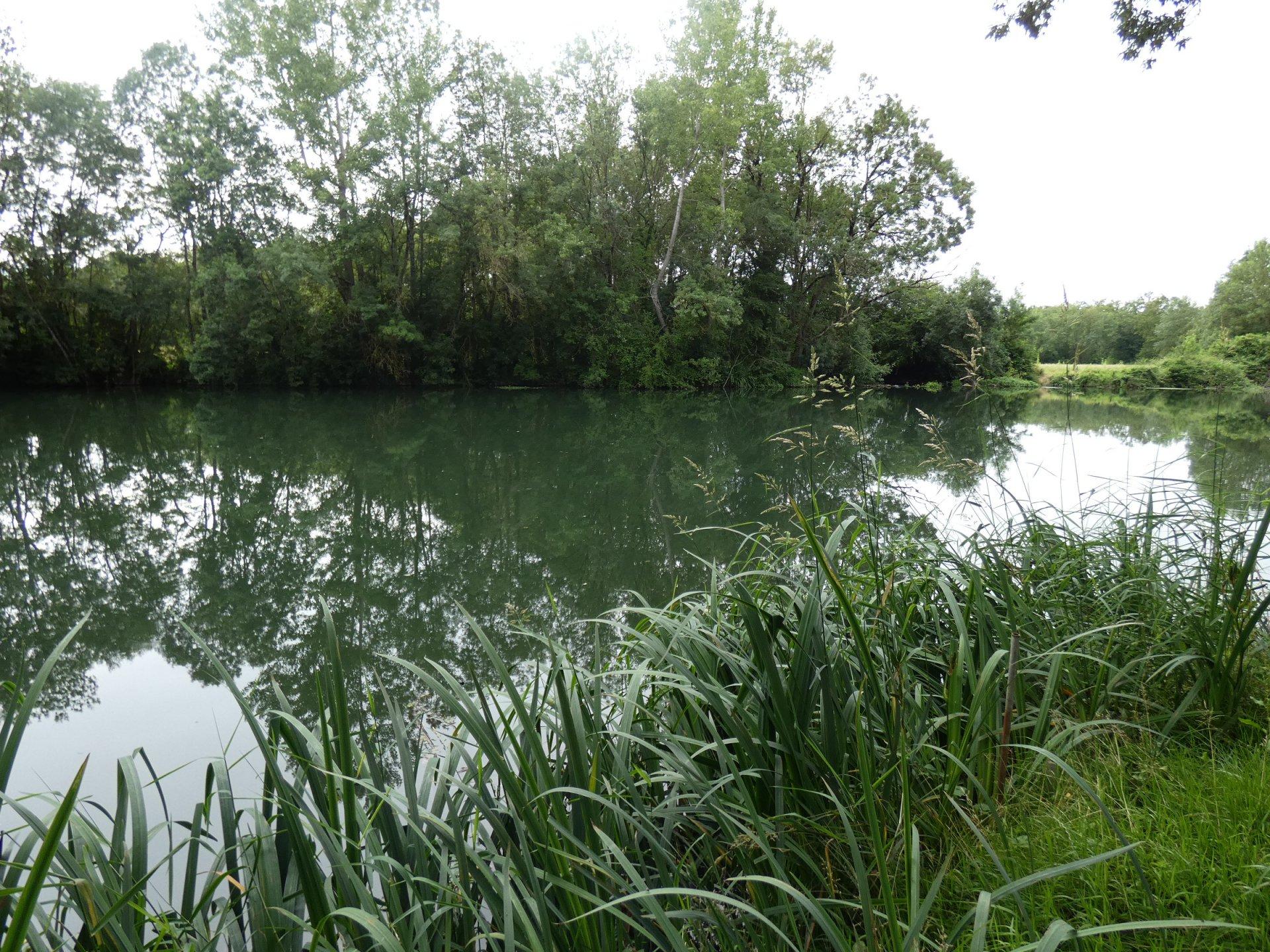 Proche Mansle avec jardin en bordure de Charente