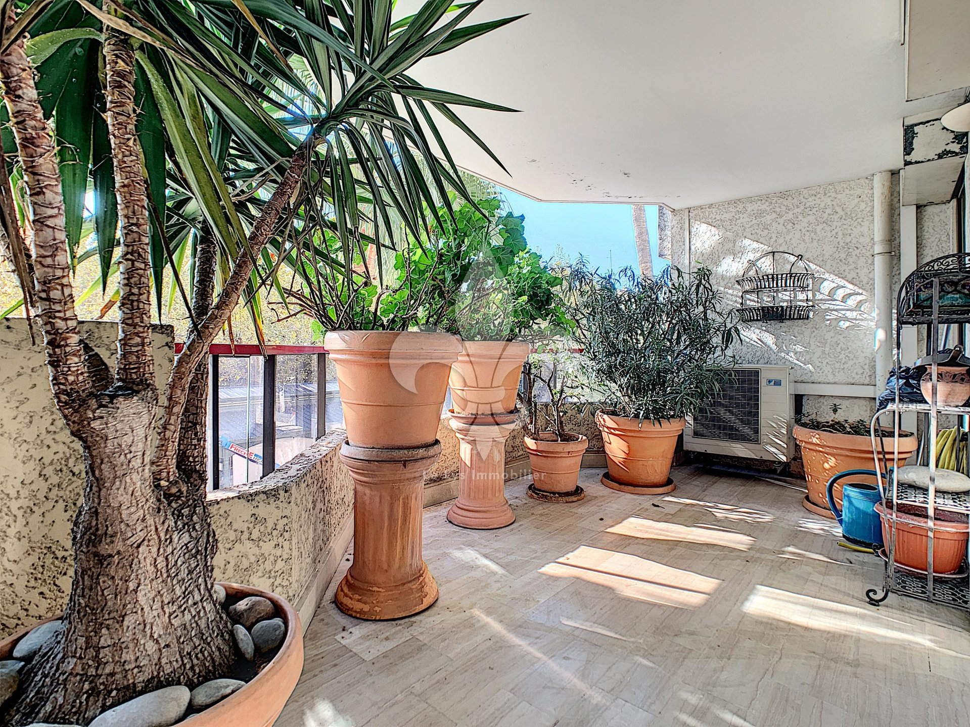 Cannes - Banane: 3 room apartment with south facing terrace