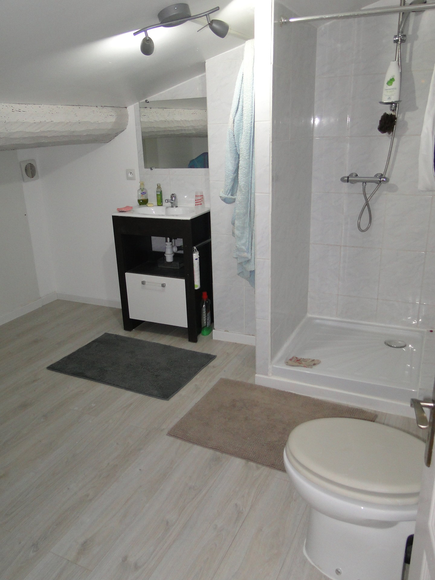 Appartement Duplex en plein cœur du village