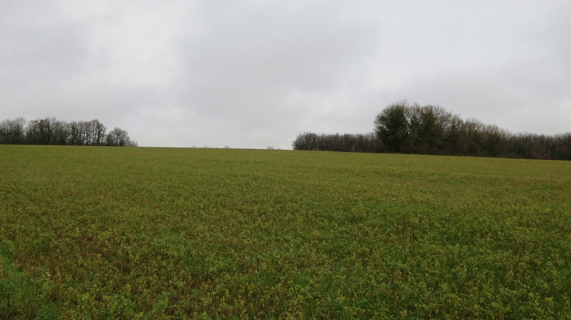 Sale Building land - Aussac Vadalle