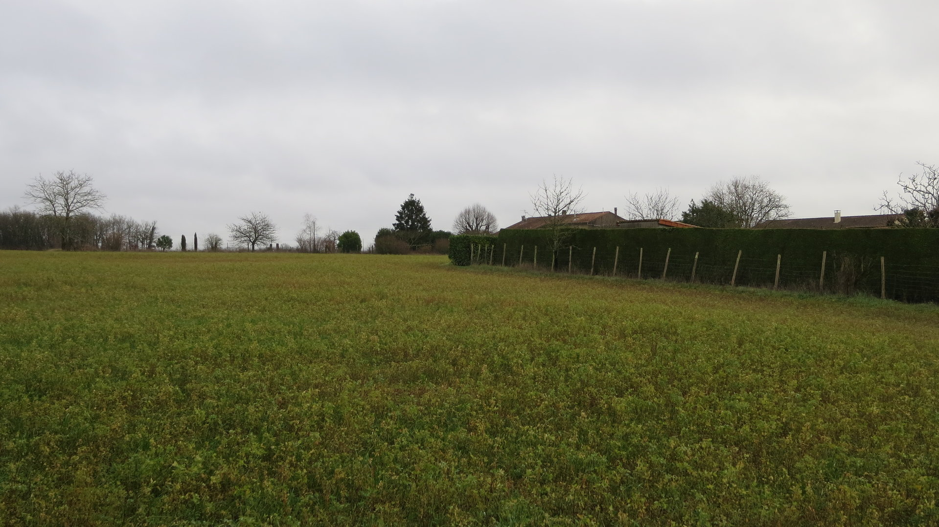 Sale Building land - Aussac Vadalle