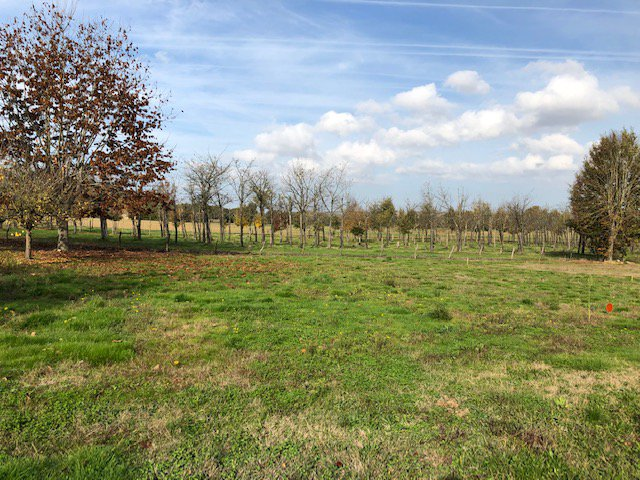 Sale Building land - Gragnague