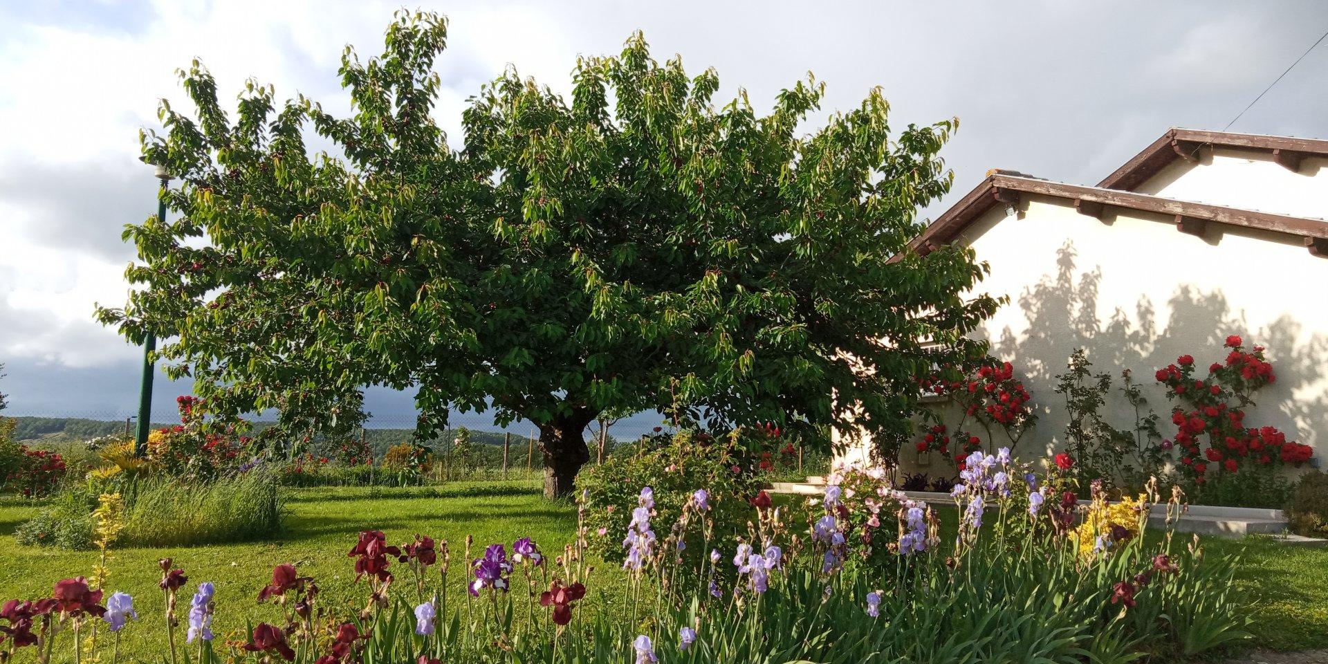Maison 110 m² avec vue Pyrénées