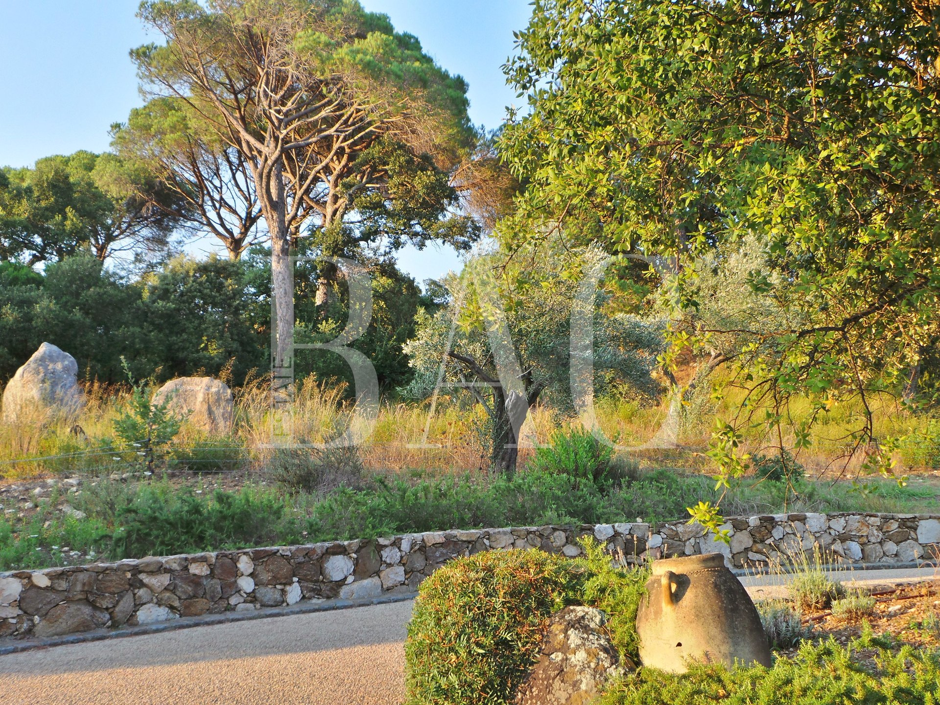 Ramatuelle, a property on 17ha (171.000M2) with more than 700 olive trees