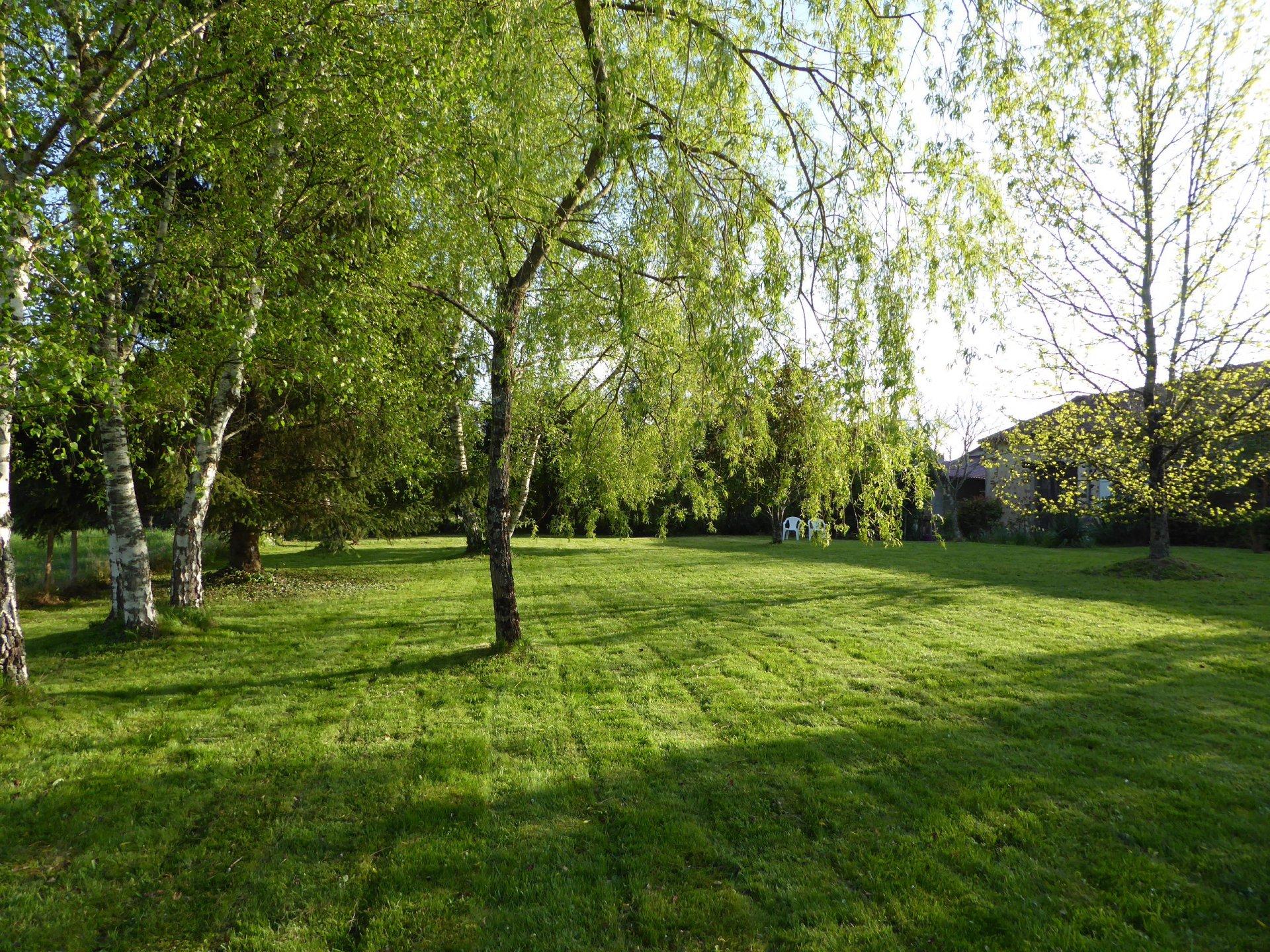 Exceptional Home - Mézières sur Issoire - Haute Vienne