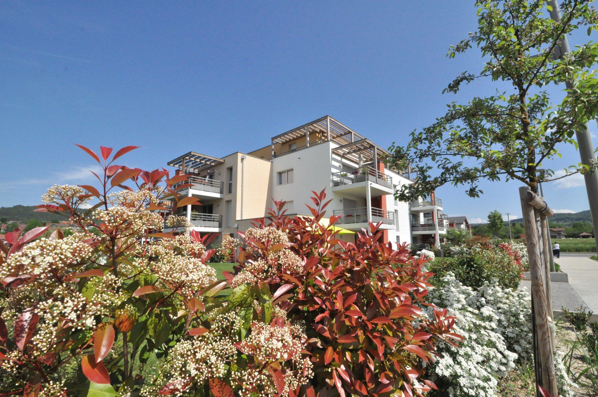 Sale Apartment - Metz-Tessy