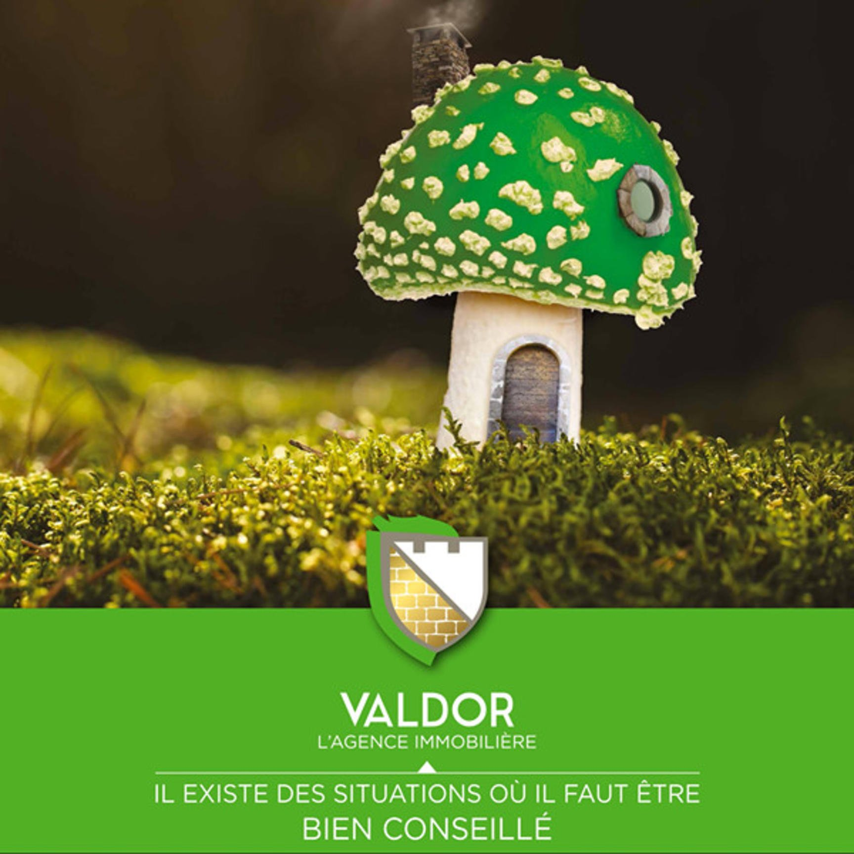 Terrain constructible vaux en Beaujolais