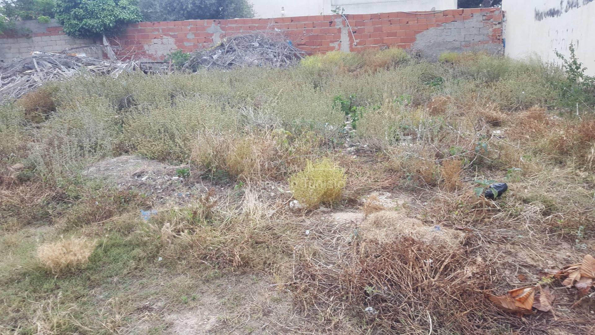 Vente terrain à Skanes - Monastir