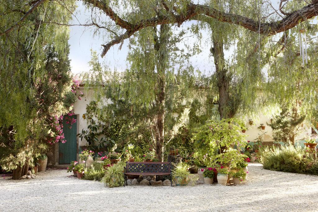 A true gem of authenticity next to Alicante