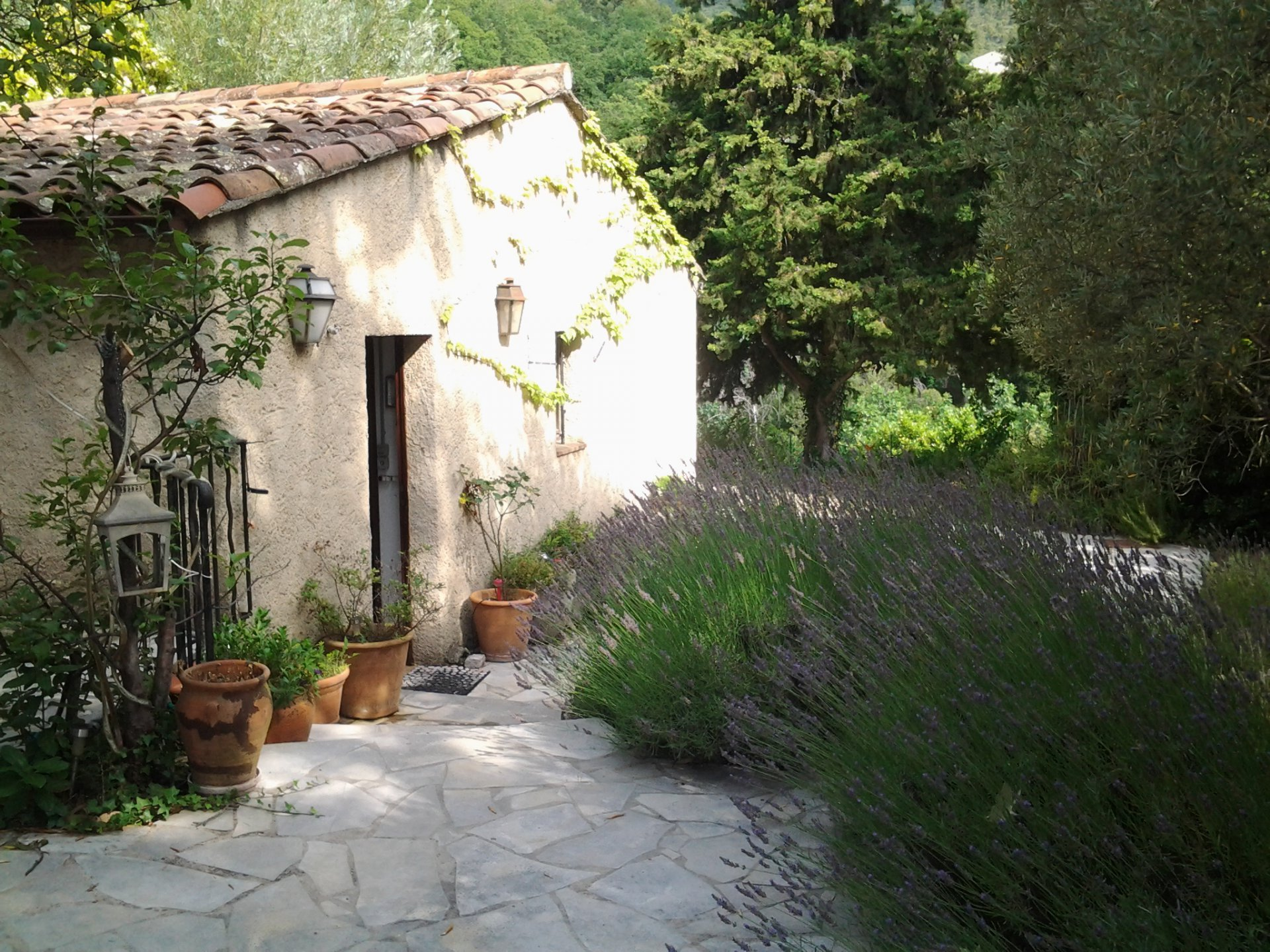 TRADITIONAL HOUSE IN THE HEART OF GREEN PROVENCE