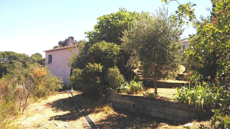Deux maisonnettes sur un terrain de 550m2