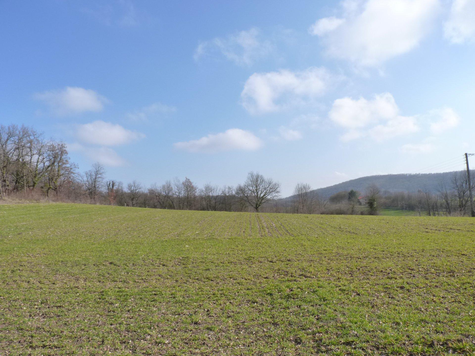 Secteur Le FRECHET, terrain constructible env. 3500 m² vue Pyrénées