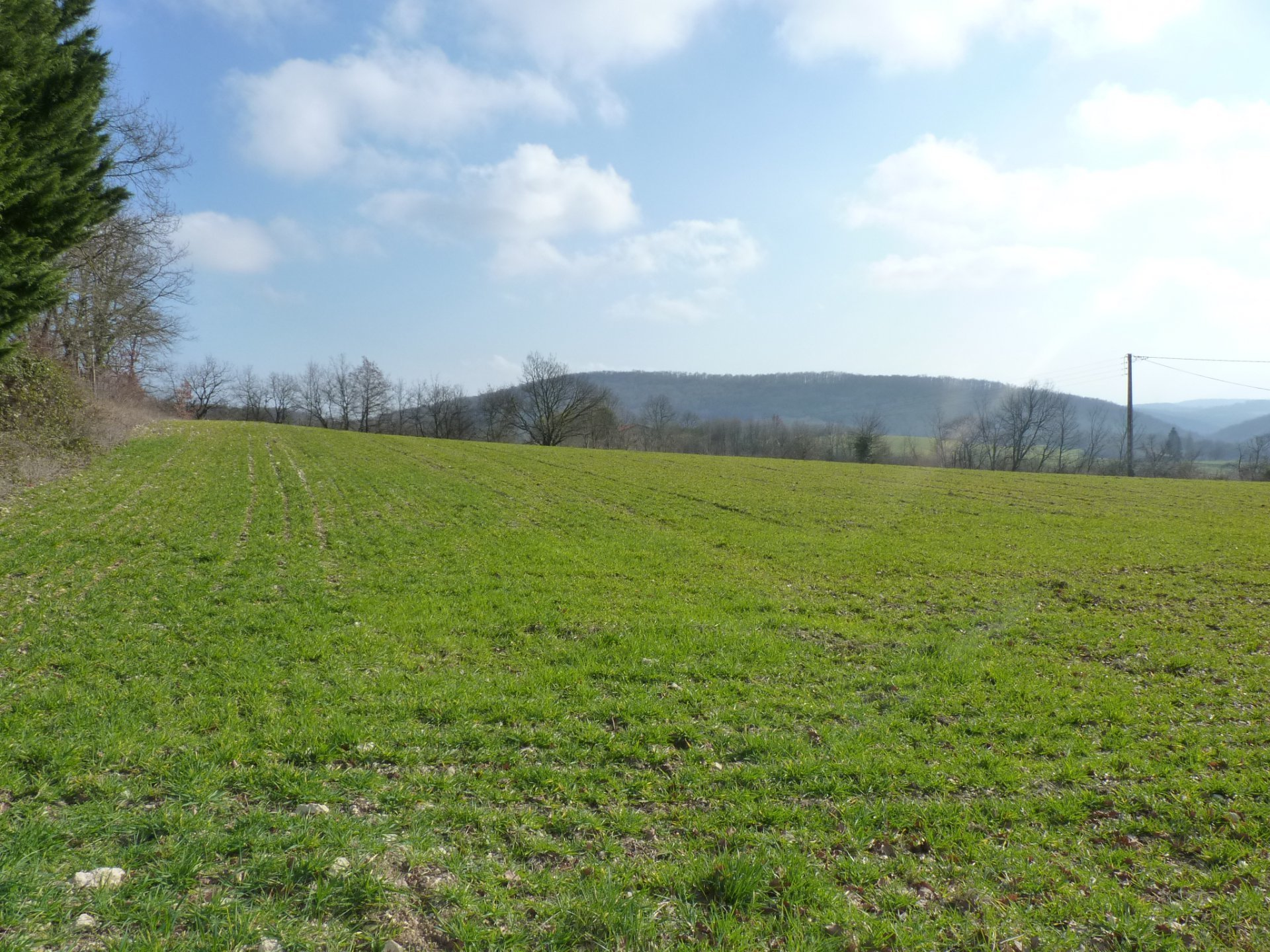 Sector FRECHET, building plot of 3800 m² view Pyrenees