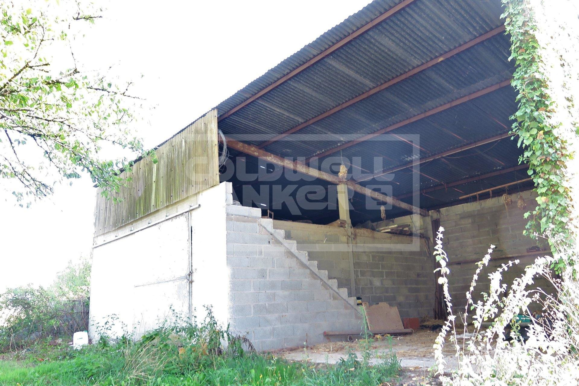 1965 house on basement with large plot and garage
