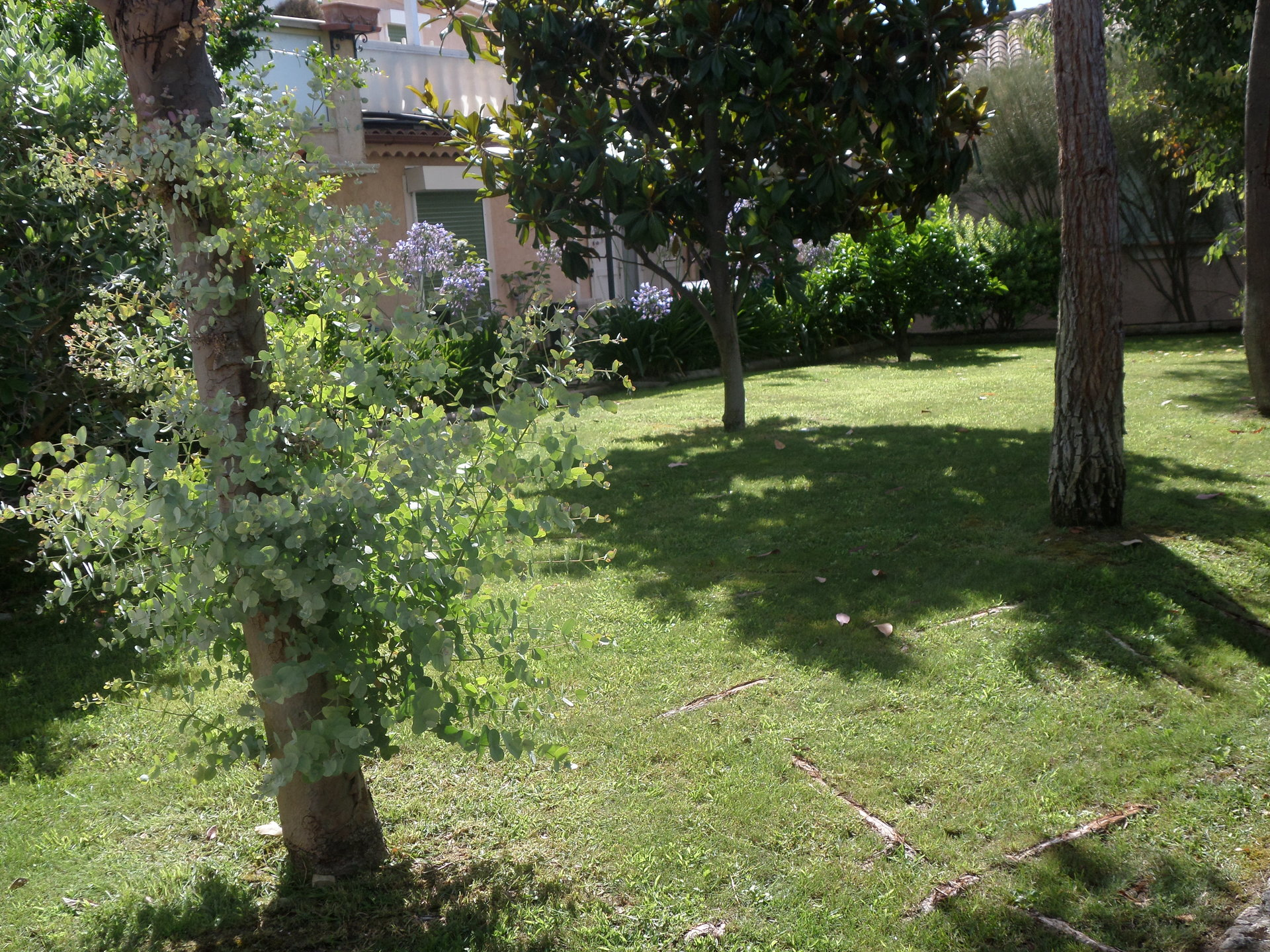 Sale Bed and breakfast - Biot Bois Fleuri