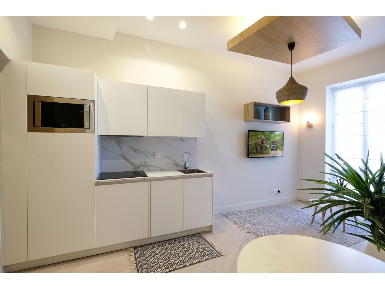 ONE BEDROOM RENOVATED APARTMENT