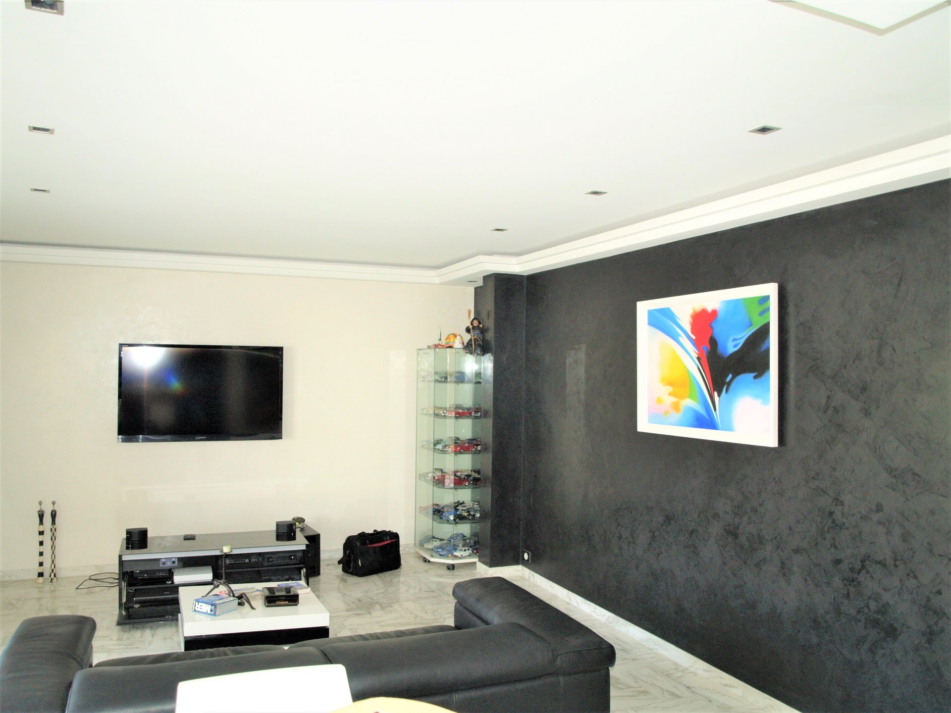Magnificent 3 Rooms - Le Cannet