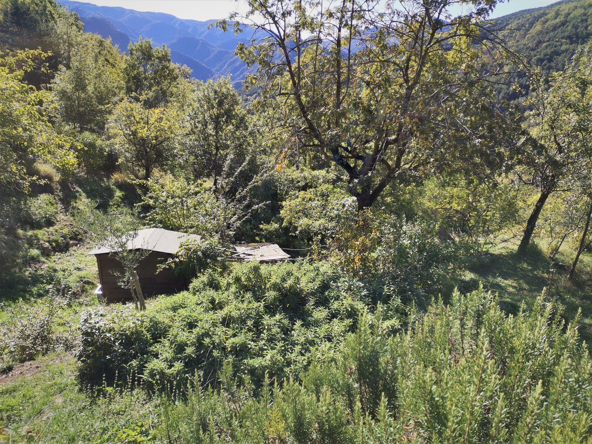 Sale Plot of land - Lantosque